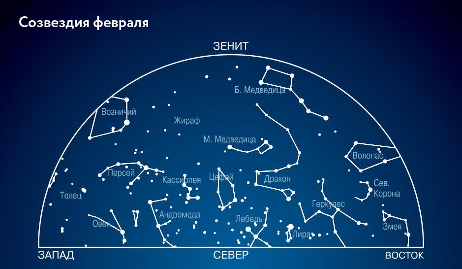 есть фото созвездий северного полушария с названиями изучили найденные останки